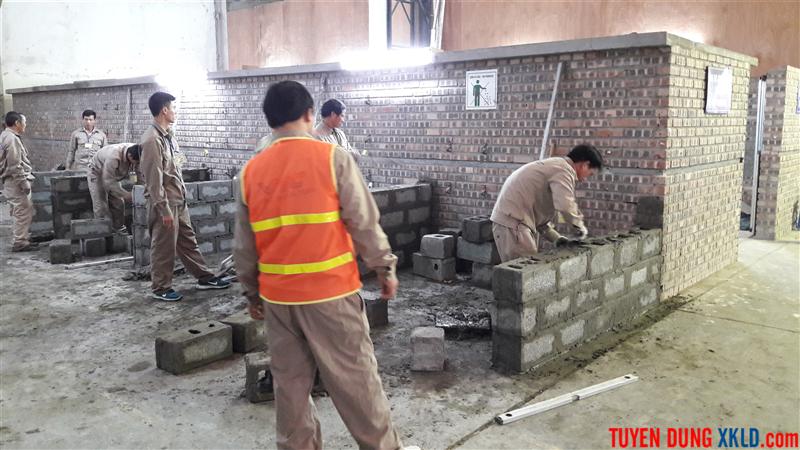 Thi tuyển Rumani ngành nghề xây dựng (4)