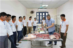 [Rumani] Tuyển thợ thực phẩm pha lọc đóng gói thịt lợn