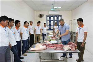 [Rumani] Cần 10 Nam thịt lơn gửi form Gấp