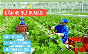 [Rumani] Tuyển Nữ Nông Nghiệp trồng rau trong nhà kính Oscar