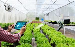 [Nhật Bản] Cần Nữ nông nghiệp hỗ trợ ra thi tuyển 3 triệu