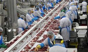 [Ba Lan] Tuyển 20 Nam chế biến thực phẩm đi ba lan năm 2021